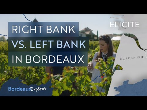 The Basics Of The Bordeaux Wine Region