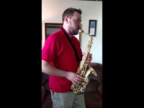 Hedwig's Theme alto saxophone