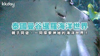 KKday【泰國超級攻略】探索神秘海洋世界!曼谷暹羅海洋世界