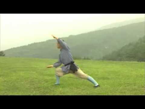 Shaolin Ditang Meihua Quan by Shifu Guosong
