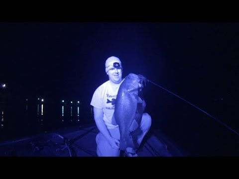 Best Baits And Colors For Night Fishing: Infrared Video!!