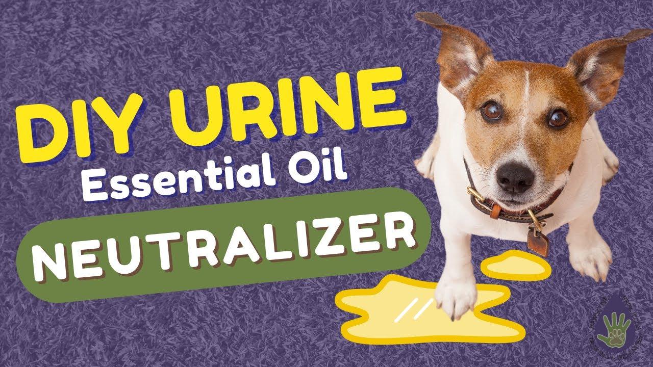 Urine Neutralizer using doTERRA Essential Oils
