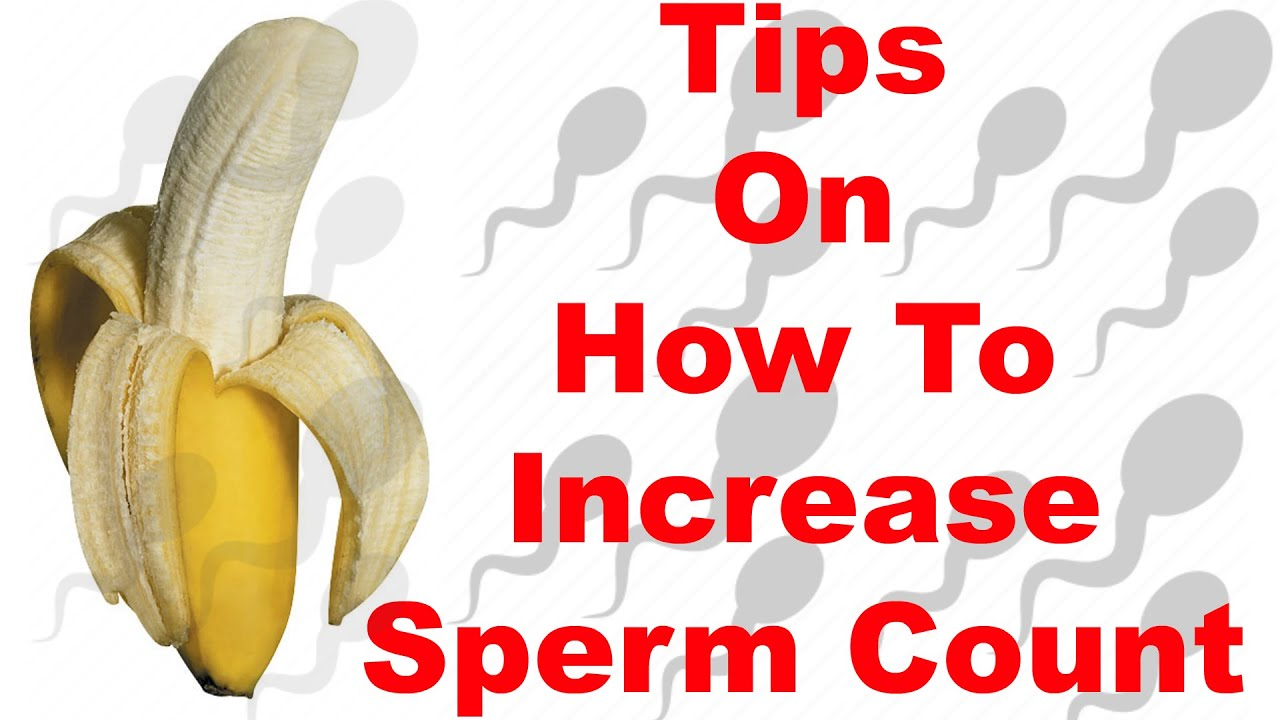 Increasing Sperm Quantity