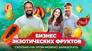 Бизнес на экзотических фруктах Как заработать на редких фруктах и ягодах из Тайланда Сочно
