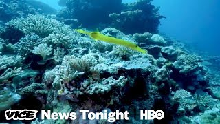 Why Australians Can't Agree On How To Save The Great Barrier Reef (HBO)