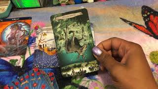 Virgo weekend reading, If you lend it, They will run. 2/8/19