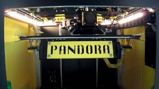 PANDORA DXs - Automatic Bed Leveling & Completion