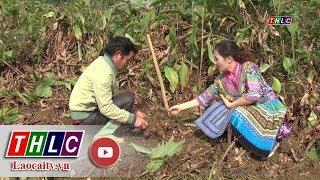 Truyền hình thực tế tiếng H'Mông (20/1/2018) | THLC