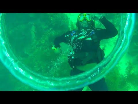 Felipe's Dive Shop (scuba diving in Providencia, Colombia)