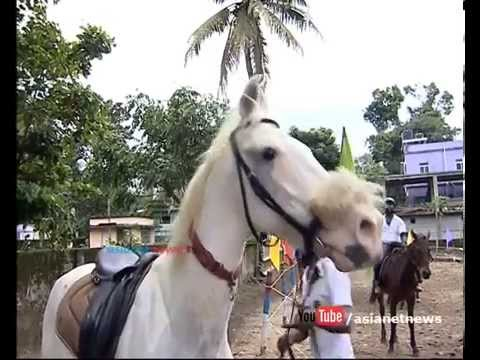 Horse riding club in Kochi | Money Time 8 October 2015