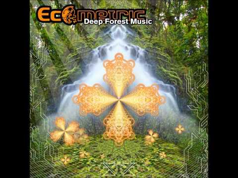 Ecometric  Deep Forest Music Full Album