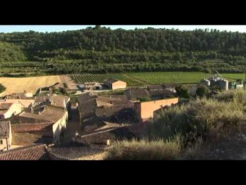 Opinions of Lleida: Family Tourism | Ara Lleida