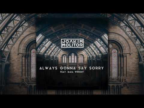 Joakim Molitor - Always Gonna Say Sorry [feat. Maia Wright] (Audio)
