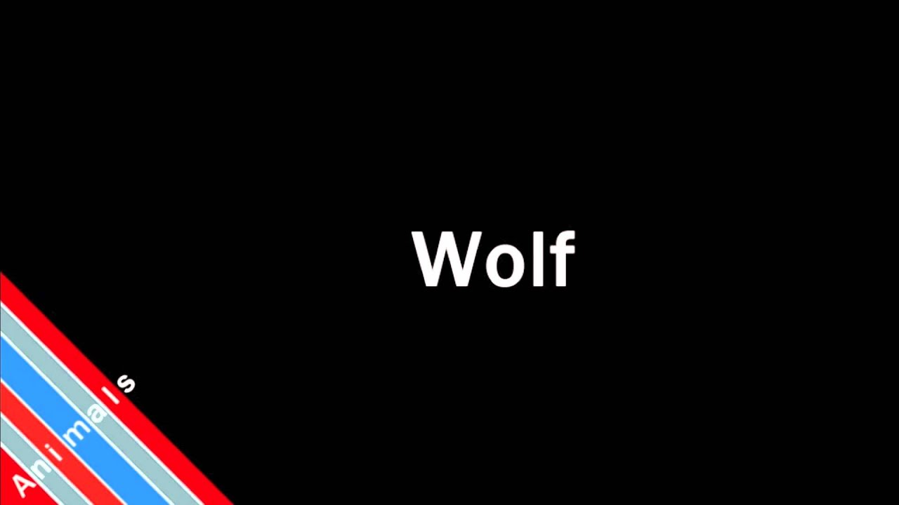 How to Pronounce Wolf