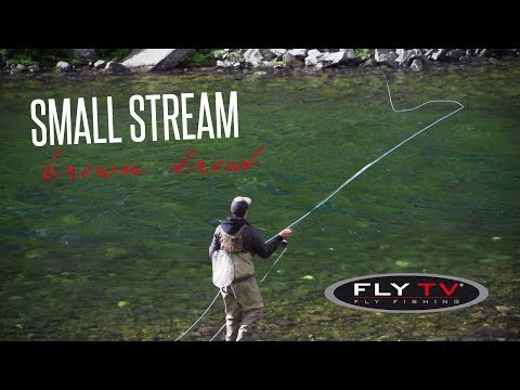 FLY TV - Small Stream Brown Troutin' In The Mountains