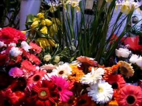 Laura J's Flowers, Florist in Cole Harbour, Nova Scotia