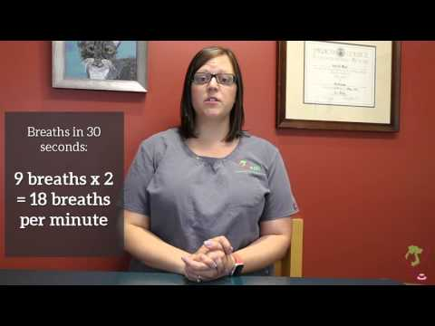 Counting The Resting Respiratory Rate