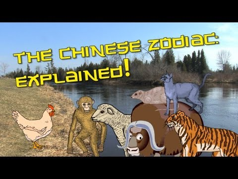 Chinese Zodiac Explained | Learn Chinese Now