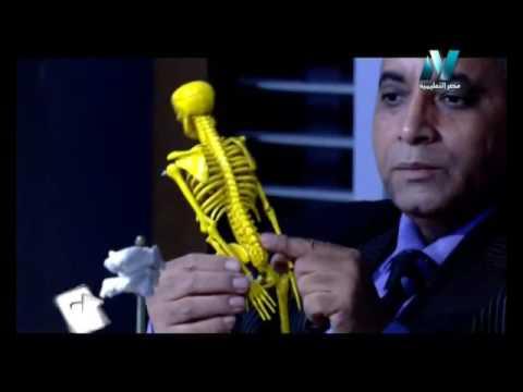 27-09-2016 أحياء لغات حلقة 4 Support in living organisms الاستاذ أشرف فرغلي