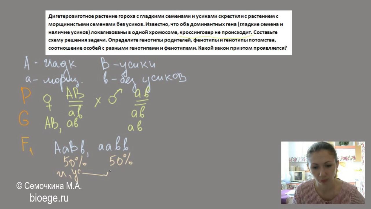 Задачи с решениями на кроссинговер с решением решение задачи в5 математика егэ