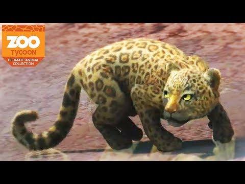 NEW ANIMALS, NEW ZOO! | Zoo Tycoon : Ultimate Animal Collection #1