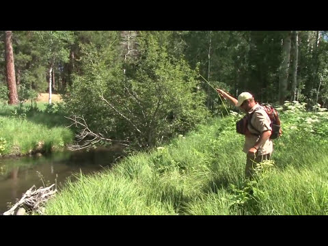 Fly Fishing For Trout At Antelope Creek Ranch