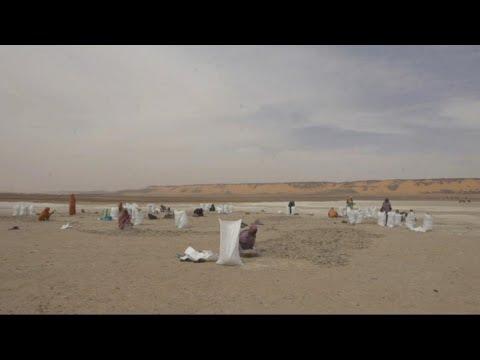 موريتانيات يحولن الملح إلى مورد اقتصادي  - نشر قبل 13 ساعة