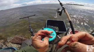 Рыбалка на северной дамбе Финского залива  Подготовка к кубку MAVER DAY 2017 СПб