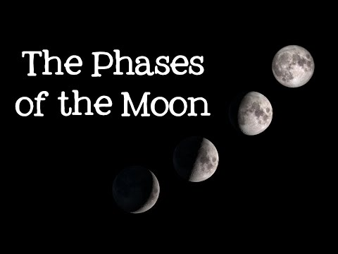 Phases of the Moon: Astronomy and Space for Kids – FreeSchool