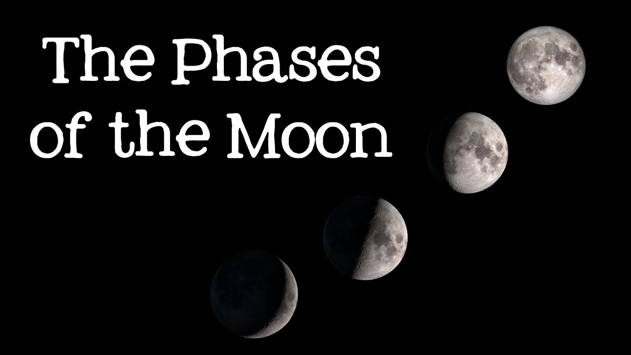 hight resolution of Phases of the Moon: Astronomy and Space for Kids - FreeSchool - YouTube