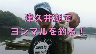 津久井湖でバス釣ってきたよ!