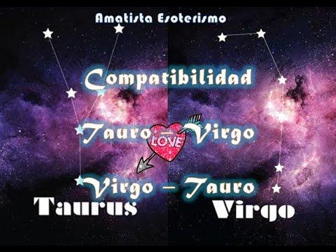 tauruss y taurus son compatibles