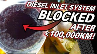 CATCH CANS & EGR explained in detail! Why your diesel's clogging up & losing power - how to fix it