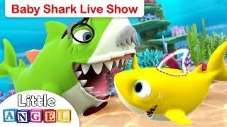 LIVE on Little Angel: Baby Shark Show | The Best Baby Shark Kids Songs & More