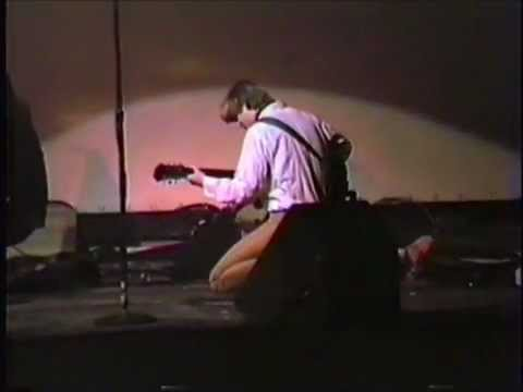 The Green Pajamas - The Dreams Inside the Butterfly's Mind (Live 1985)