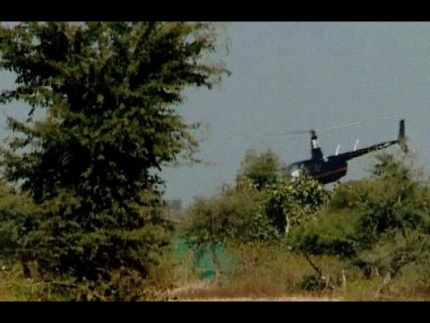 Helicopter Succeeds in Capturing Blue Bulls  ERA Capture Technique