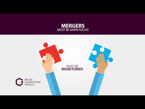 Understanding Merger Control (Belize Competition Project)