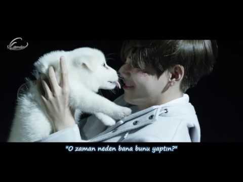 [Türkçe Altyazılı] BTS - STIGMA (V Solo)