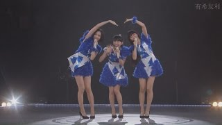 Perfume  「Puppy love」Live HD