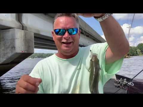 Dropping Brush With Some Bridge Fishing - High Rock Lake