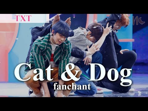 (rom/eng)-txt---'cat-&-dog'-lyrics-+-fanchant
