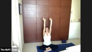 Karma Beginners Flow with Sara A -  bird flow eagle, crow, pigeon without music