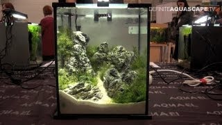 Aquascaping - Aquarium Ideas from PetFair 2013, Łódź, Poland, pt.2