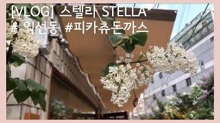 vlog 익선동 나들이 l 거북이식당 ikseon dong l turtle restaurant 스텔라 stella