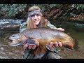 Cherokee Winter Trout Fishing
