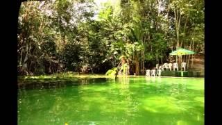 Eco Parque Igarapé Açú