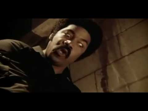 Do you see where Im coming from you jive motherfucker!? Black Dynamite