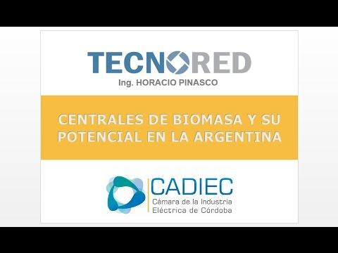 Centrales de Biomasa y su Potencial en Argentina