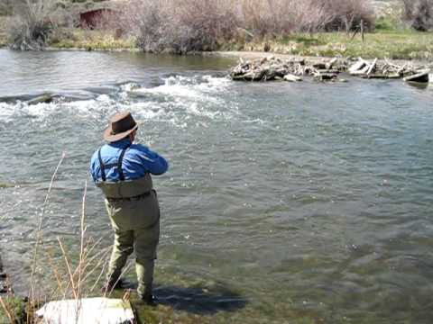 beaverhead river fly fishing youtube