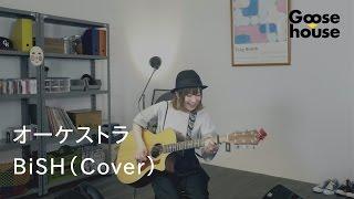 2017年8月のGoose house Streaming Liveは 8/19 20:00(JAPAN TIME)STA...